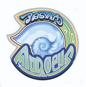 Cherche le symbole 2 - Page 5 Besaid_Aurochs_Logo