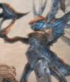 Biding Mantis.jpg