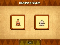 Rabbit Show.jpg
