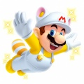 White Raccoon Mario NSMB2.jpg