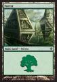 Forest3 ROE.jpg