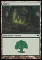 Forest2 SHM.jpg