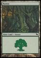 Forest4 SHM.jpg