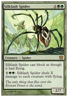 Silklash Spider 9E.jpg