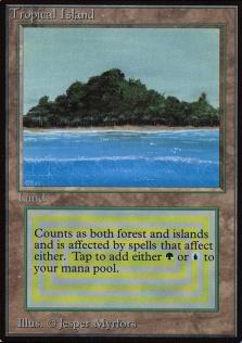 Tropical Island B.jpg