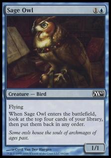 Sage Owl M10.jpg