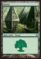 Forest4 ROE.jpg