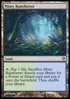 Misty Rainforest ZEN.jpg