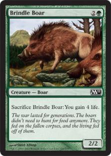Brindle Boar M11.jpg