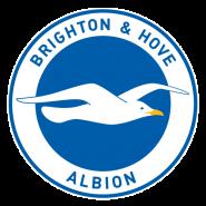 Brighton & Hove Albion.png