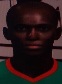 Stephane Mbia.jpg