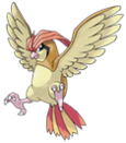 17Pidgeotto.png