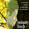 AntiquityTree.jpg