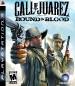 Call of Juarez: Bound in Blood (North America Boxshot)