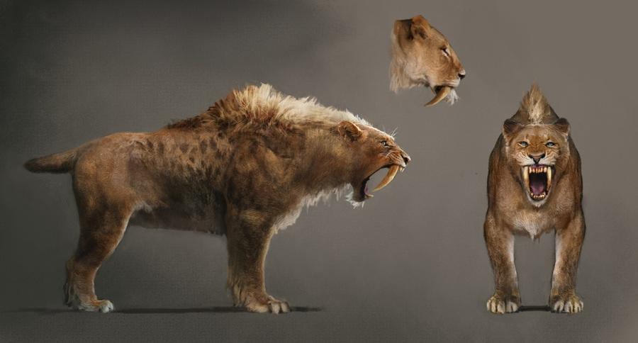 Far Cry Primal Concept Art Neoseeker
