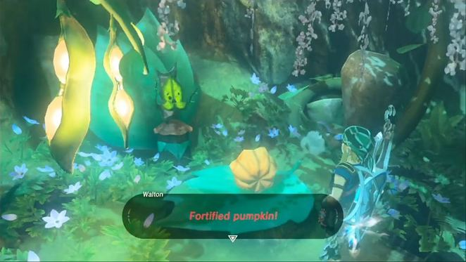 Hebra And Woodland Sidequests The Legend Of Zelda Breath Of The Wild Neoseeker