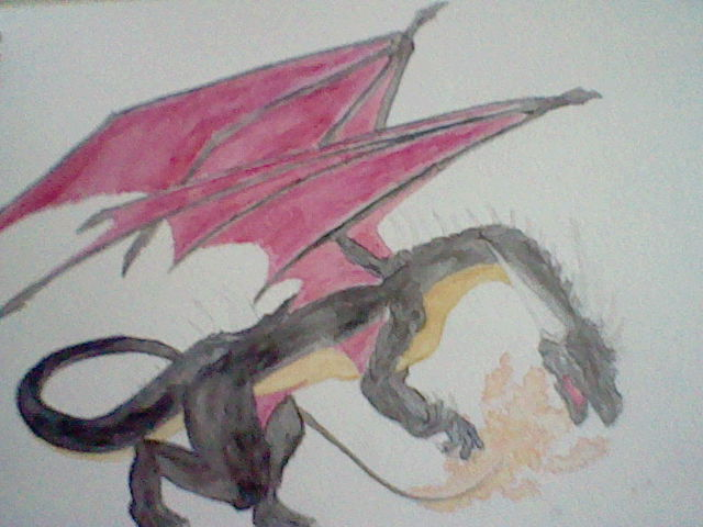 Cynder the Shiny Charizard