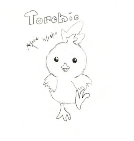 Torchic « Pokémon Fanart
