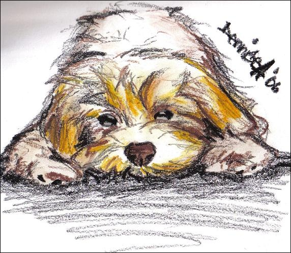 """Doggy"" by DenniseA"