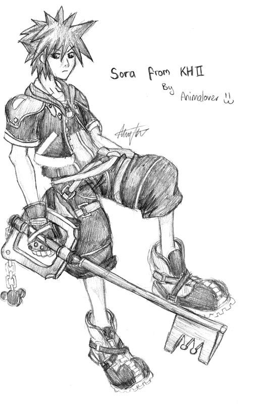 """Sora"" by Amy"