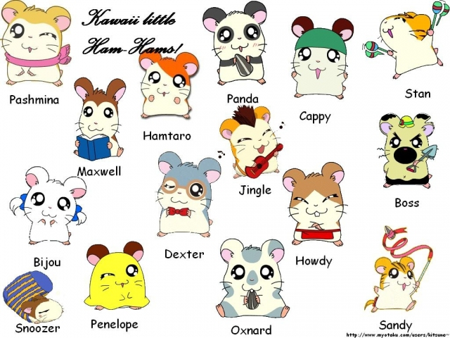 Hamtaro from angelting hosted by neoseeker - Dessin hamtaro ...