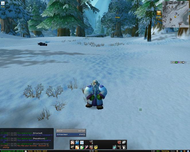 level 10 Dwarf Priest