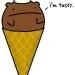 Bear-cone