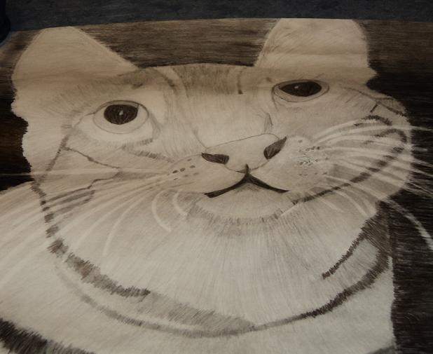 My Drawing of a cat. It's not very good though :(