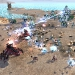 Supreme Commander 2 - Beach Battle