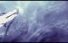 Okami Amaterasu Banner V2