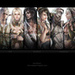 Lineage Fanart All Races 1080p