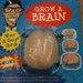 Grow A Brain