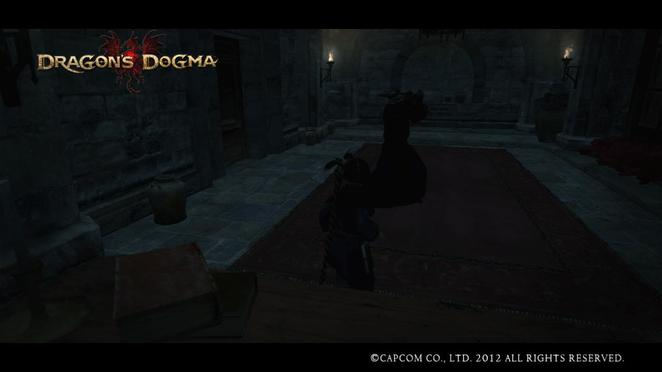 Dragon's Dogma - The Ravings of a Madman