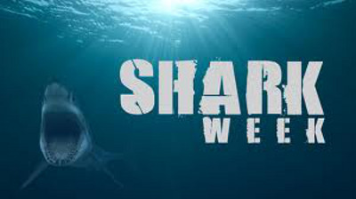 Shark Week (Discovery Channel) - TV Shows Forum - Neoseeker Forums