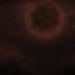 Calamity - Falling Moon