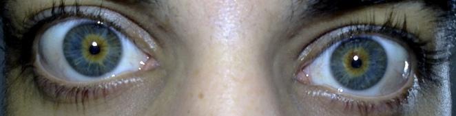 Digiport [Karis] Eyes_display