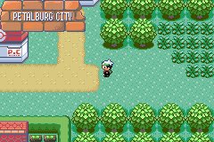 pokemon emerald how to get to petalburg city