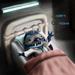 Stitch Lazarus Button Eyes Version