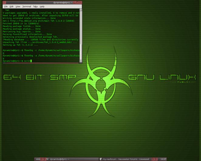 My Debian Desktop w/ Fluxbox in 2007