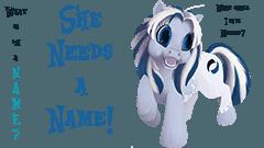 Name Neoseeker's Pony Mascot (OC) Banner