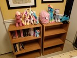 My 'new' Bookcase, with some MLP Fanfic prints