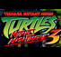 Teenage Mutant Ninja Turtles 3: Mutant Nightmare icon