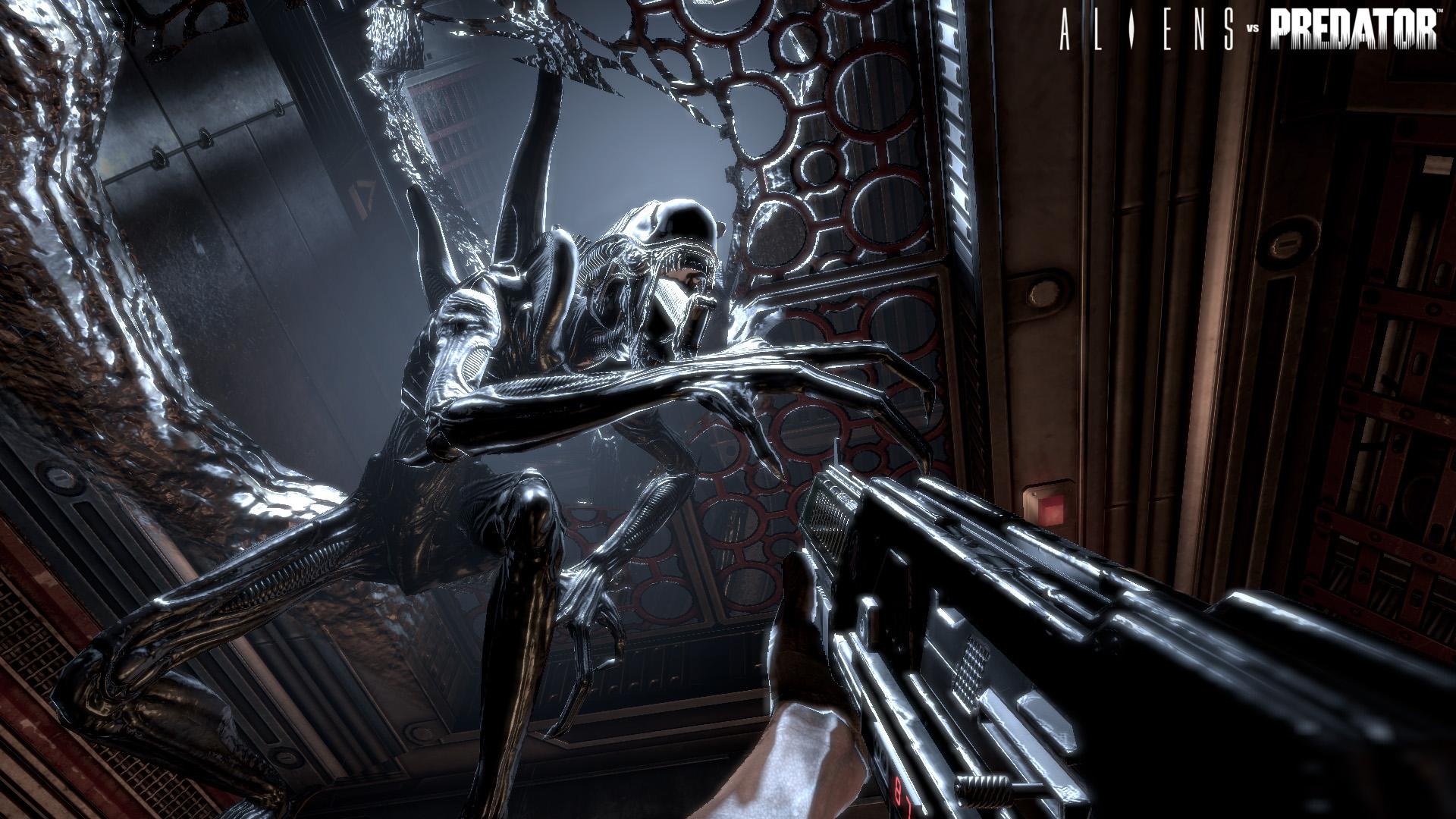Aliens Vs Predator Multiplayer Demo Incoming Update Neoseeker