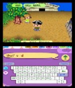 Animal Crossing Wild World Cheats Action Replay