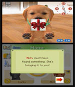 Nintendogs: Labrador and Friends screenshot 0