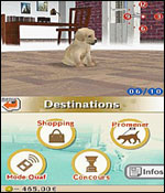 Nintendogs: Labrador and Friends screenshot 10