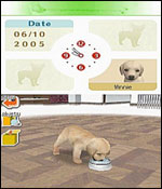 Nintendogs: Labrador and Friends screenshot 12