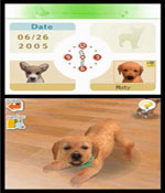 Nintendogs: Labrador and Friends screenshot 2