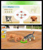 Nintendogs: Labrador and Friends screenshot 3