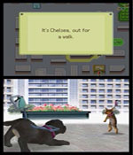 Nintendogs: Labrador and Friends screenshot 4